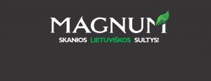 Magnum logo E 2014 07 28